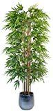 Las mejores cañas de bambú decorativas del Ikea